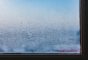 condensation on a window glass