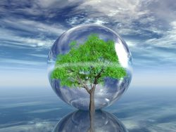 are water softeners bad for the environment
