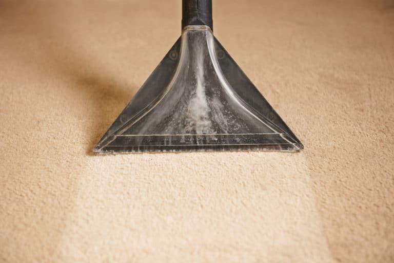 Best Carpet Cleaner
