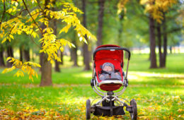 Can Pushchairs Be Used from Birth?