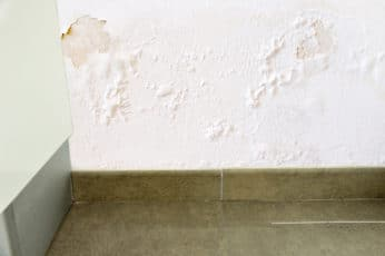 damage on a wall caused by damp