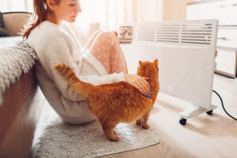 a lady and her cat trying to warm up