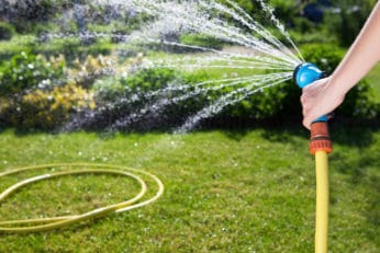 a person watering the lawn