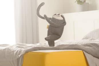 eve sloth dancing