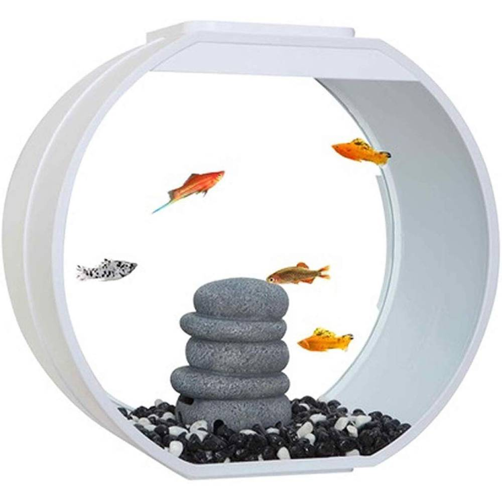 Fish R Fun Deco O