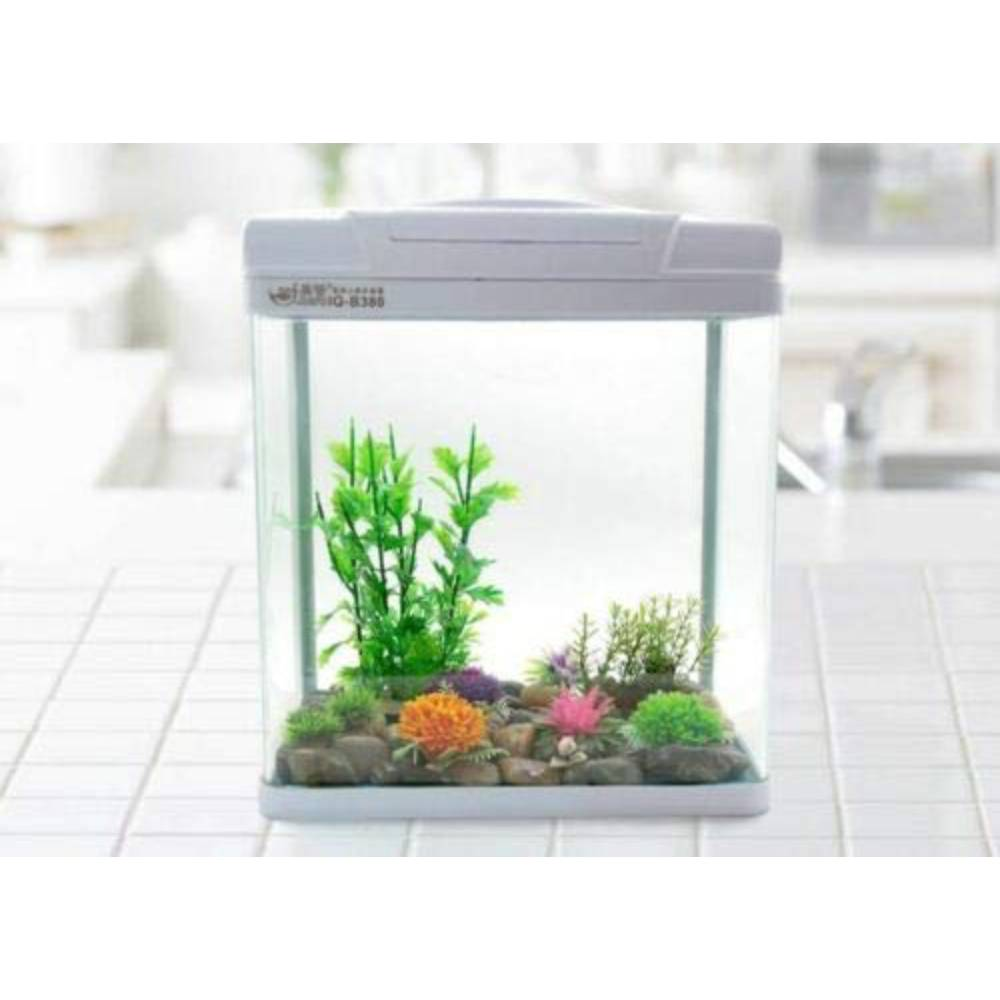 JBA 65L Medium Nano Starter Aquarium