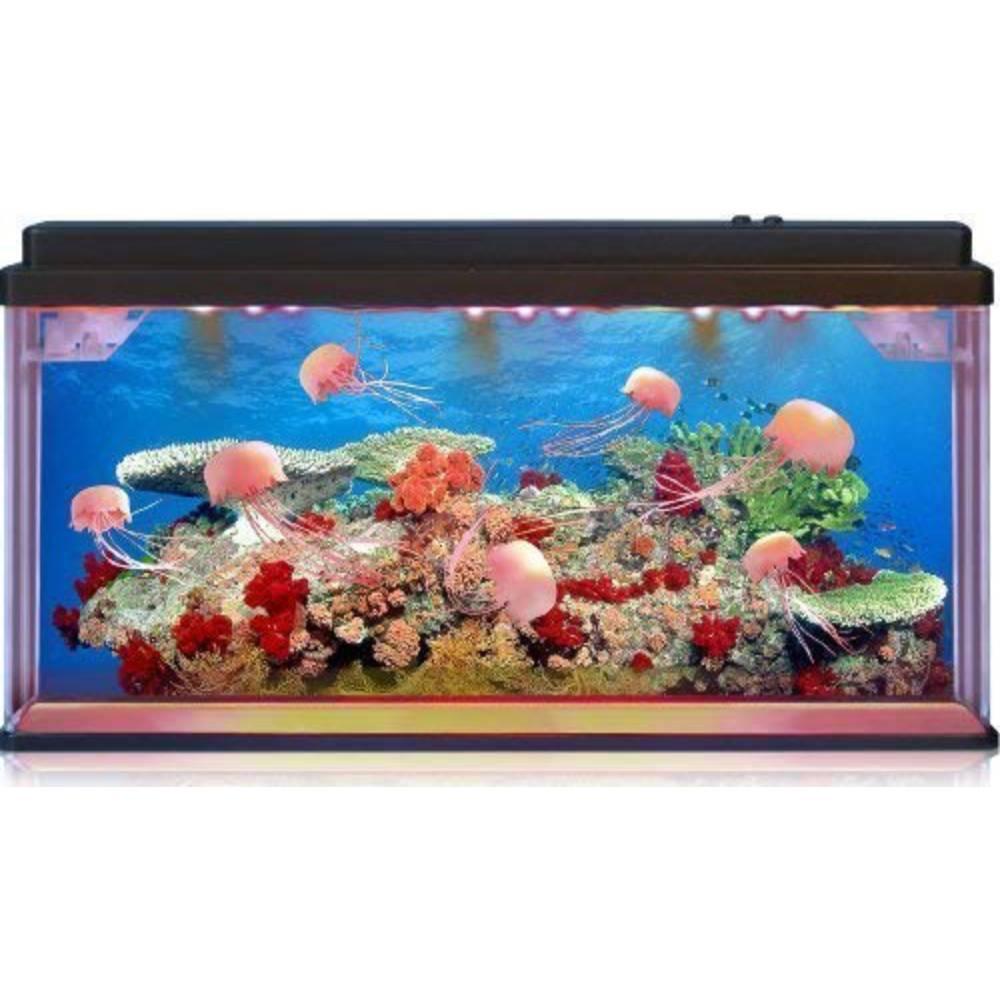 Jelly Fish_Sea Turtle Aquarium