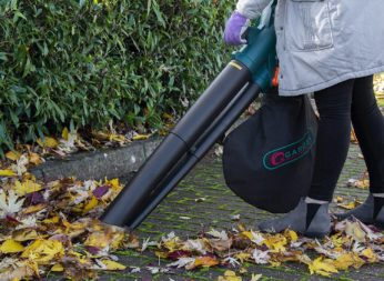 vacuuming leaves in a pathway