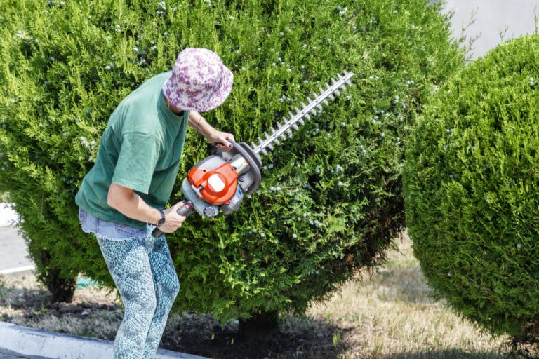 best petrol hedge trimmer