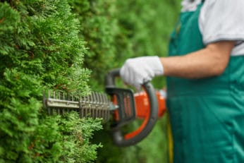 close up of a hedge trimmer cutting bushes