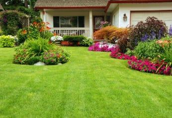beautiful manicured yard