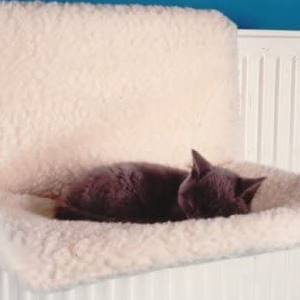 Quality Pet Products Soft Radiator Mat