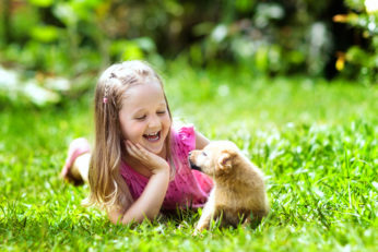 child and pet playing on the grass