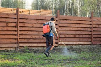 man spraying pesticide on grass