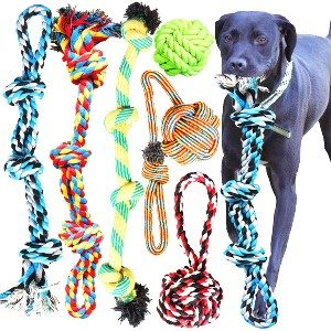 Youngever 6-Pack Rope